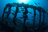 Wreck of the RMS Rhone.Salt Island.British Virgin Islands
