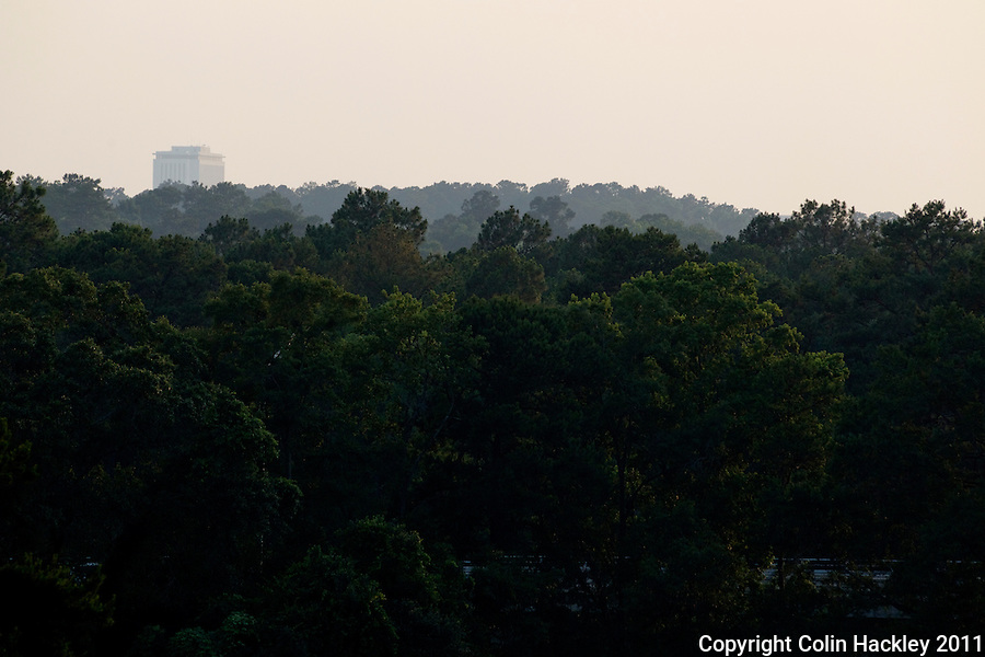 GOVERNOR'S PARK: A vista to the west includes a glimpse of the Florida Capitol beyond the tree-covered hills..COLIN HACKLEY PHOTO