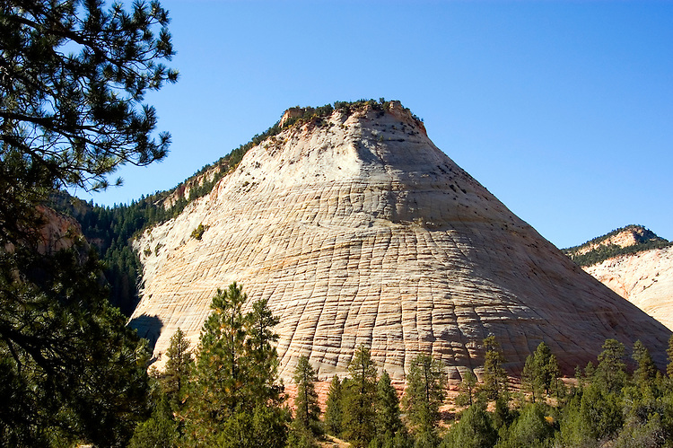 Zion National Park, Utah, UT, Checkerboard Mesa rock formation, landform, Southwest America, American Southwest, US, United States, Image ut373-17643, Photo copyright: Lee Foster, www.fostertravel.com, lee@fostertravel.com, 510-549-2202