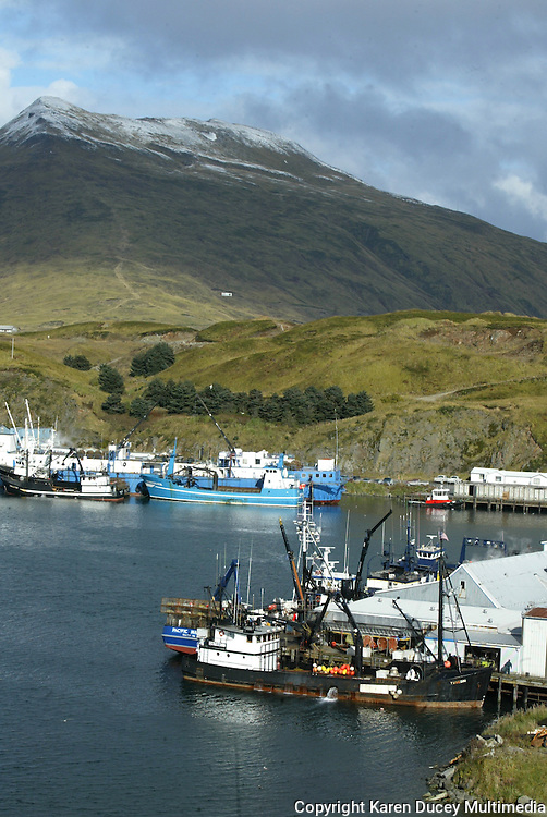 10/23/03 crab NWS::  Crabbers are tied to Alyeska Seafoods plant in the foreground and Roayl Aleutian seafoods in the rear shot from Unalaska, AK. after the 2003 Bristol Bay red king crab season.  Strawberry Hill is in the background with Mount Ballyhoo looming behind it.