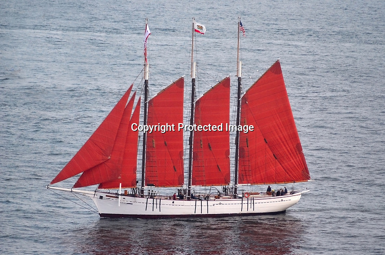 Editorial Stock photo of the tall ship The American