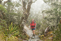 Woman tramper walking in fog through alpine section of Routeburn Track, Fiordland National Park, Southland, South Island, UNESCO World Heritage Area, New Zealand, NZ