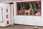 Store front with ice machine and Santa and his reindeer behind glass