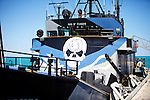 Sea Shepherd's vessel Steve Irwin's logo , whales and dolphins.