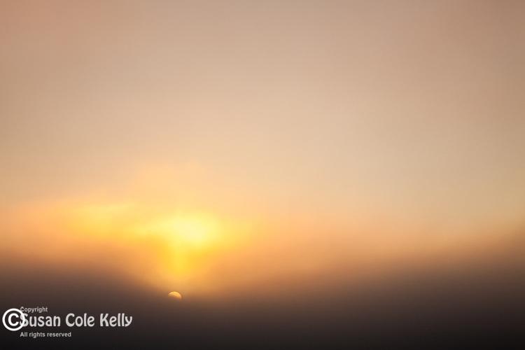 The sun rises through a thick layer of summer fog in  Cape Cod National Seashore, Truro, Massachusetts, USA