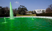 Green water flows to celebrate St. Patrick's Day in the fountain on the South Lawn of the White House in Washington, DC, on March 17, 2012. .Credit: Joshua Roberts / Pool via CNP