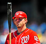 7 June 2009: Washington Nationals' outfielder Adam Dunn in action against the New York Mets at Nationals Park in Washington, DC. The Mets shut out the Nationals 7-0 to take the third game of the weekend series. Mandatory Credit: Ed Wolfstein Photo