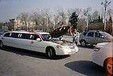 Kasachische Hochzeiten sind bedeutende Veranstaltungen. An diesem Tag werden weder Kosten noch Mühen gescheut. Kein Wochenende vergeht in Almaty, ohne dass die Strechlimousinen die zahlreichen Brautpaare durch die Stadt chauffieren. Kasachstan ist rohstoffreich und prosperiert. Kritik an den Schattenseiten des Aufstiegs duldet das System von Präsident Nursultan Nasarbajew nur geringfügig. Bilder von Hinterhöfen und grauen Vorstädten sollen nicht an die Öffentlichkeit gelangen. / Kazakhstan is a resource-rich and prosperous country.  President Nursultan Nasarbajew's system hardly allows any criticism. Pictures of backyards and suburbs are not supposed to go public.