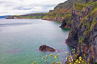A scenic view along the Antrim Coast in Northern Ireland.