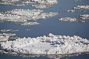 Photo by Leandra Lewis of ice pads floating on Missouri River near Hermann, Missouri.