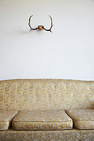 Sofa and antlers