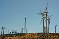 Wind Turbines, Green, Energy, field, farm