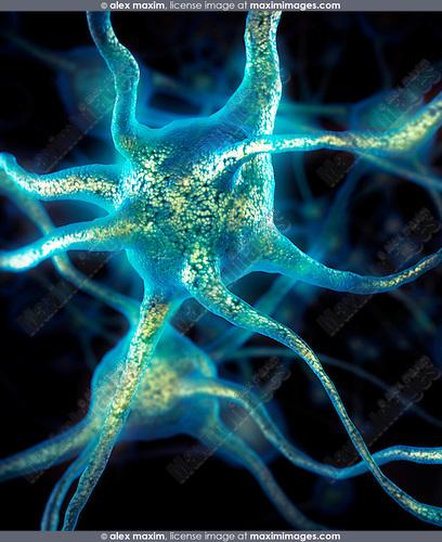 Brain cells Neurons conceptual Neural connections Neurology