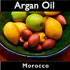 Argan Nuts Photos and Argan Oil Production Pictures  Morocco