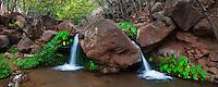 Lomi Lomi falls in the remote Miloli'i Canyon on Kauai's Na Pali coast