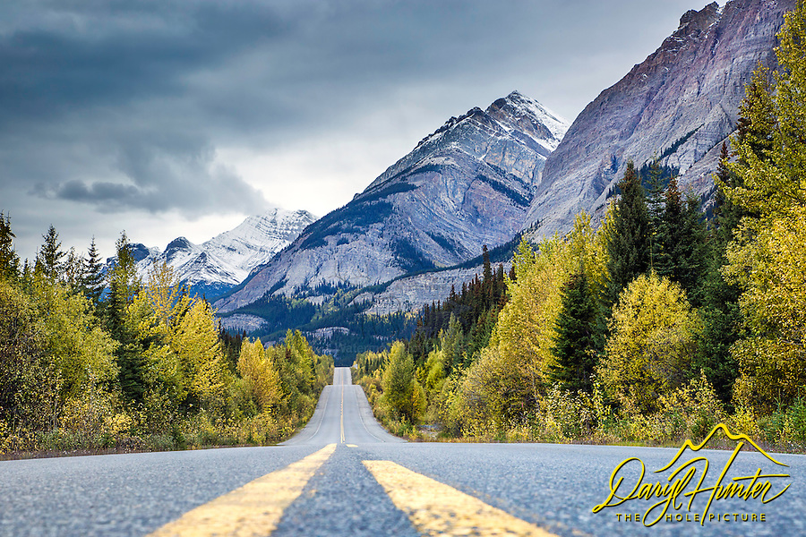 Autumn along the Icefields Parkway in Banff National Park. The Icefields Parkway is one of the most stunning stretches of road I have ever seen.