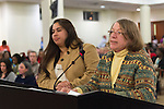 January 3, 2013 - Mineola, New York, U.S. -   (L to R) LUCIA GOMEZ-JIMENEZ, of Hempstead, and from Long Island Civic Participation Project, and NANCY ROSENTHAL, of Hewlett, speak against the proposed Republican map at the Nassau County Districting Advisory Commission's night time meeting on two Redistricting maps for the 19 Legislative Districts, one proposed by Republicans, one by Democrats. IIn the standing room only chambers, dozens shared their views with the commission during the Public Comment segment. After a brief recess, the commission voted at 10:40 PM for each map, neither of which passed. By January 5 it must complete its work for the Nassau Legislature, which must pass a Redistricting map by March 5, 2013.