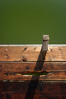 View from a dock of green algae overtaking a local lake's water