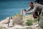 Day 04. Puerto Madryn