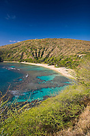 coral reef and white sand beach, Hanauma Bay Nature Preserve, Oahu, Hawaii, USA, Pacific Ocean