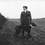 Hare Coursing..Slipper, Wayne Drew, with two greyhounds wearing identifying red and white collars. He is looking over the hedge towards a group of beaters who are driving hares, one at a time, towards the coursing field. The Cotswold Coursing Club Meet, near Kilkenny, Gloucestershire..Hunting with Hounds / Mansion Editions (isbn 0-9542233-1-4) copyright Homer Sykes. +44 (0) 20-8542-7083. &lt; www.mansioneditions.com &gt;..