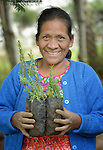 Germinahilda Perez holds tree seedlings at an eco-agricultural training center in Comitancillo, Guatemala. The center is sponsored by the Maya Mam Association for Investigation and Development (AMMID).