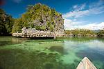 Karst island and vegetation, Surangga area, Ttiton Bay, Papua