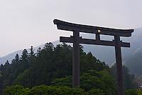 The massive torii gate at Hongu Shrine rises above the trees.
