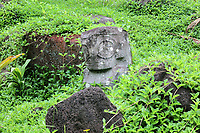 Stone carved tiki sculpture, in grey keetu or volcanic tuff, 85cm tall, with crowned head and tattooed mouth, hands on the belly and male genitalia, on the Queen's Tomb, at Tohua Pehekua, a small cemetery with 4 tombs of chief Te Hau Moea and his family, who died in the early 20th century, near the Iipona archaeological site, near the village of Puamau, on the island of Hiva Oa, in the Marquesas Islands, French Polynesia. Tiki sculptures are usually carved in wood or stone and represent Ti'i, a half-human half-god ancestor who is believed to be the first man. Tiki often have a huge head, symbolising power, and big eyes symbolising knowledge. Tiki are respected and are often placed outside houses or tombs as protective statues. Picture by Manuel Cohen