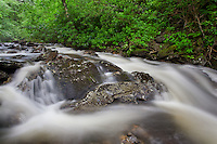 A rising stream in the Smoky Mountains after a summer thunder storm. Newfound Gap, Tn.