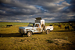 Larry Haverfield driving the cake truck to feed his cows.  The device on the back of the truck drops cake pellets of protein and grain for the cows, supplementing their grass diet...Larry and Bette Haverfield on their ranch near the defunct town of Russell Springs, Kansas.  The Haverfields have been embroiled in a long-running war over the presence of prairie dogs on their ranch.  The Haverfields assert, correctly, that the prairie dogs contribute to increased biodiversity on their property, enabling them to graze their cattle in a fashion that mimics the movement and grazing patterns of pre-settlement buffalo through their range.  The county, particularly county commissioner Carl Ulrich, contend that prairie dogs are a nuisance and should be eradicated.  Many of the haverfields' neighbors feel the same way.  In recent years, the county has exterminated prairie dogs from the Haverfield property using a number of methods, including gas and poison, before sending the Haverfields the bill.  The Haverfields have discovered a number of 'secondary kill' animals, carcasses of birds and mammals that have eaten the poisoned prairie dogs and subsequently been killed themselves.  Complicating matters, the US Fish and Wildlife Service has recently re-introduced endangered black footed ferrets onto the land, a natural predator of the prairie dogs.  This move has heightened tensions between neighbors and led to a series of legal maneuvers on both sides to control the spread of the prairie dogs as well as the ferrets.