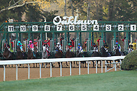HOT SPRINGS, AR - MARCH 18: The start of the running Rebel Stakes at Oaklawn Park on March 18, 2017 in Hot Springs, Arkansas. (Photo by Justin Manning/Eclipse Sportswire/Getty Images)