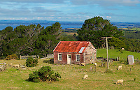 Traditional homestead with mailbox, North Island, New Zealand