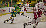 24 November 2013: University of Vermont Catamount Forward Pete Massar, a Senior from Williston, VT, in second period action against the University of Massachusetts Minutemen at Gutterson Fieldhouse in Burlington, Vermont. The Cats wore special camouflage jerseys to celebrate Military Appreciation Day. The game-worn jerseys were auctioned off with proceeds benefiting the Vermont Veterans Fund (VVF). The Catamounts shut out the Minutemen 2-0 to sweep the 2-game home-and-away weekend Hockey East Series. Mandatory Credit: Ed Wolfstein Photo *** RAW (NEF) Image File Available ***