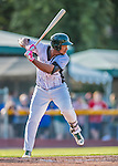 4 September 2016: Vermont Lake Monsters first baseman Miguel Mercedes in action against the Lowell Spinners at Centennial Field in Burlington, Vermont. The Lake Monsters fell to the Spinners 8-3 in NY Penn League action. Mandatory Credit: Ed Wolfstein Photo *** RAW (NEF) Image File Available ***