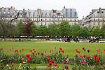 Tuileries Gardens (Jardin des Tuileries) in spring and Parisian architecture, Paris, France, Europe