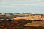 A group of windmills is lit by dappled light in the mid-afternoon in the Palouse of Eastern Washington State, seen from Steptoe Butte.