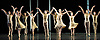 Asphodel Meadows<br /> Choreography by Liam Scarlett <br /> <br /> The Royal Ballet Triple Bill at The Royal Opera House, London, Great Britain <br /> <br /> General rehearsal <br /> 18th November 2011 <br /> <br /> <br /> <br /> Soloists : Robert Clarke &amp; Kate Shipway<br /> <br /> <br /> Photograph by Elliott Franks
