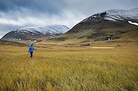 Female hiker hikes along Kunsleden trail north of Sälka mountain hut, Lappland, Sweden