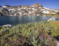 Lake Winemucca