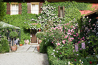 The flowerbed leading to the front door of Ca' delle Rose is filled with a variety of roses and foxgloves