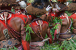 Huli wigmen group viewed from behind, Papua New Guinea