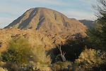 Mt. Eisenhower from the Living Desert Reserve