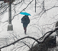 Another weekend storm hits New York on Sunday, March 1, 2015 dropping five inches of snow in Central Park. The storm is expected to leave ice on the roads making the Monday morning commuter hazardous.  (© Richard B. Levine)