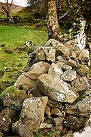crumbling drystone wall of abandoned croft, Fairy Glen, Uig, Isle of Skye, Scotland