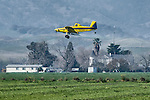 Air Tractor AT-502B flying over and spraying, late winter. near Madison, California