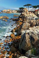 The rocky coastline, Pacific Grove, California.