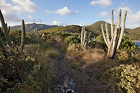 Hikers Janet Simonsen and Brooke Morton along the.Tektite trail near Lameshur Bay.St John.US Virgin Islands