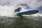 SURF DOG SAN DIEGO
