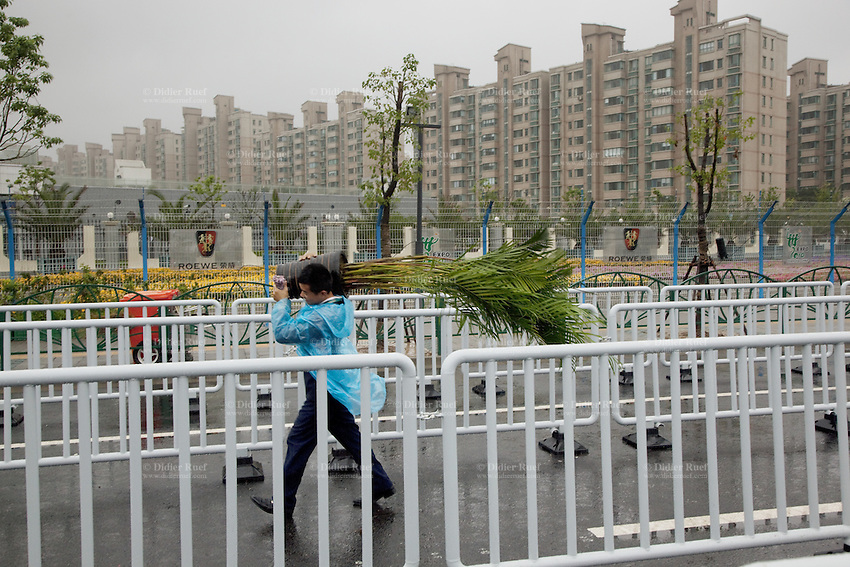 China. Shanghai. World Expo. Expo 2010 Shanghai China.  A chinese man carries on his shoulder a tree which will be displayed inside the Expo site. Rainy day. 25.06.10 © 2010 Didier Ruef